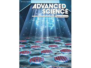 Un article du LVTS dans la revue Advanced Science