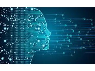 Analyse d'images à l'aide de Deep learning