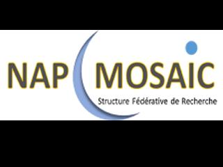 Colloque NAP MOSAIC sur les Nanosciences